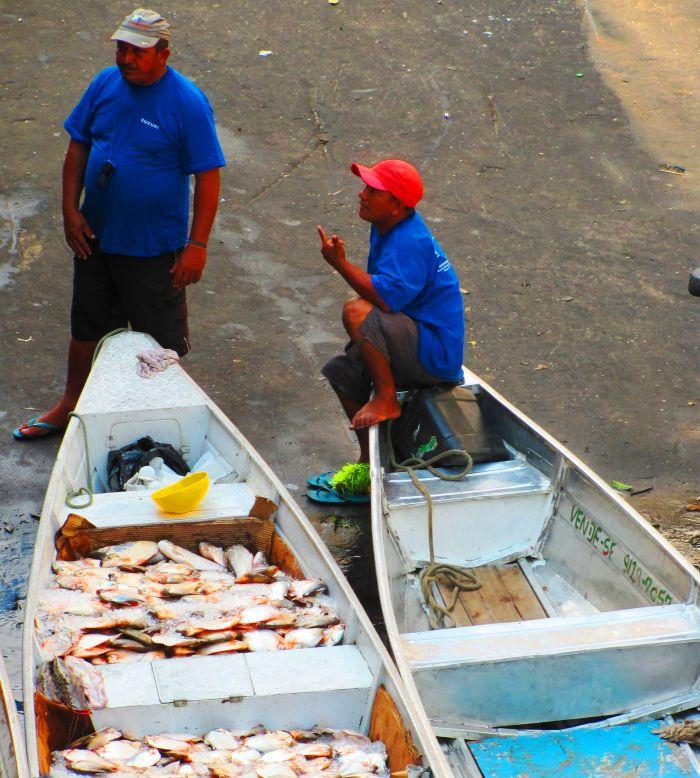 Amazonští rybáři mají v růžových botech zdatnou konkurenci
