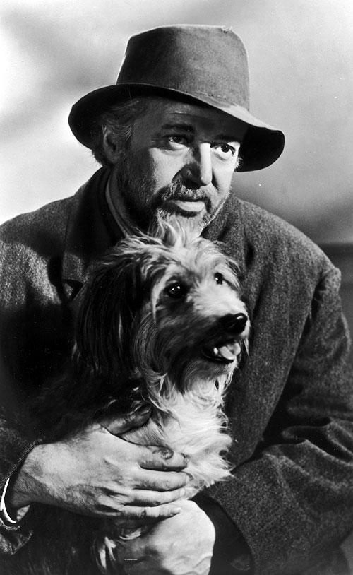 Haas herec, scenárista i režisér v roce 1956, v dramatu Jednou nohou v pekle (Edge of Hell)