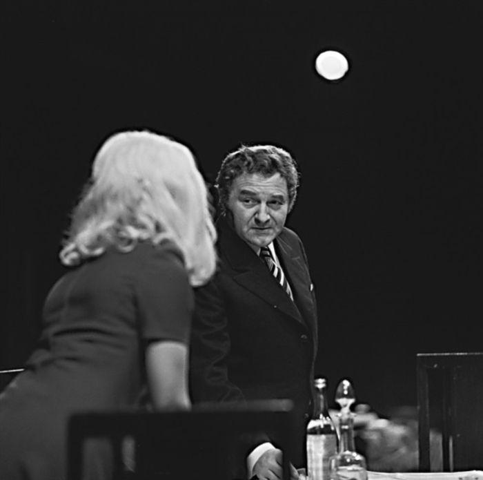 V roce 1974 v představení Divadla na Vinohradech Neklidný den, neklidná noc