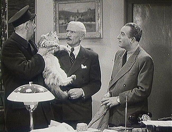 Jeho poslední filmovou rolí se stal šéfredaktor v komedii Roztomilý člověk v komedii režiséra Martina Friče Roztomilý člověk. Na snímku s Ferencem Futuristou a Oldřichem Novým.