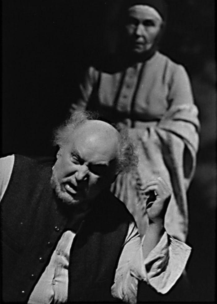 V dramatu A. P. Čechova Černý mnich – Laterna Magika, 1983