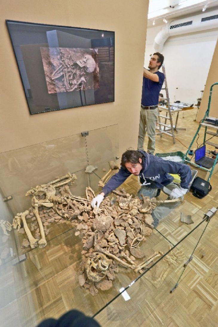 archeologie - výstava