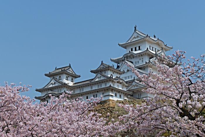 Pomíjivost květů sakur, krása a extrémně rychlá smrt byla často spojována s úmrtností. I proto je jejich symbolika tak bohatá a jsou používány v japonském umění.
