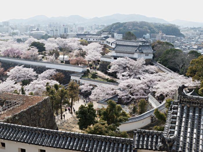 Podhradí hradu Himedži
