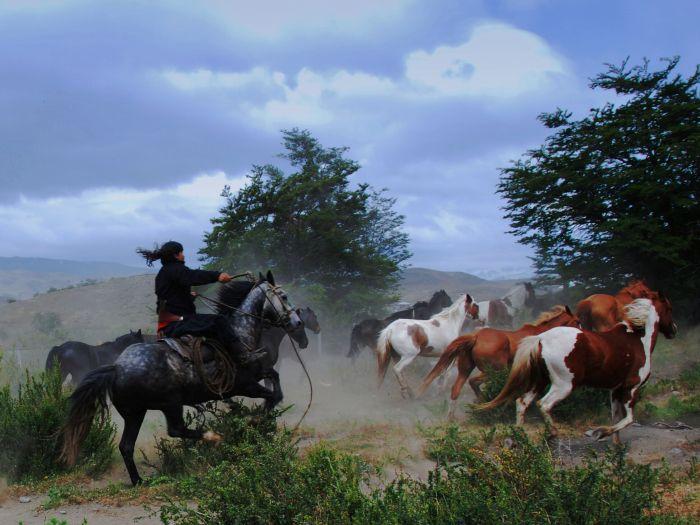 Gaučové v národním parku Torres del Paine