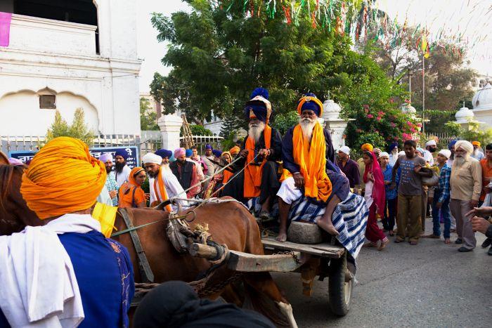 Sikhští lvi Nihangové