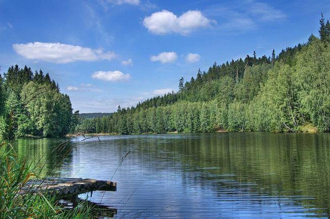 Vernéřov - rybník