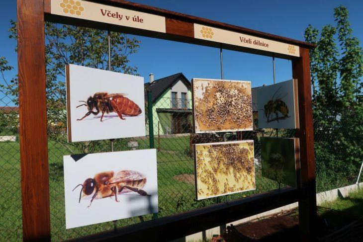 Nasavrky - včelí stezka