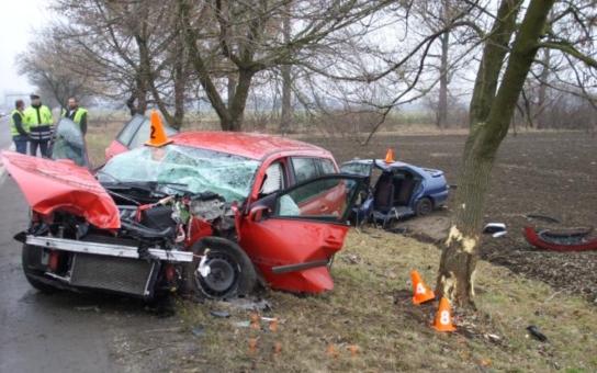 Liberecký kraj: Dopravní nehody si vloni vyžádaly 25 obětí