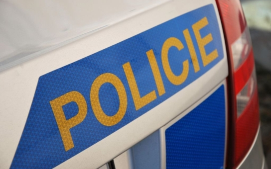 Necelou hodinu po činu policisté zadrželi dva pachatele