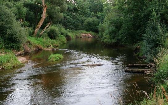 Dobrovolníci pomohou vyčistit okolí řek v povodí Moravy