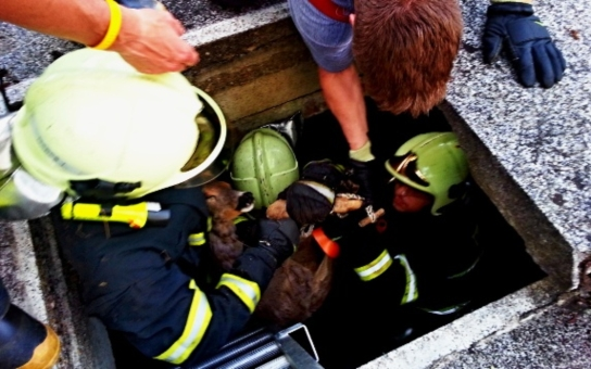 Brněnský záchranný sbor pomáhá Praze, posílá na pomoc hasiče