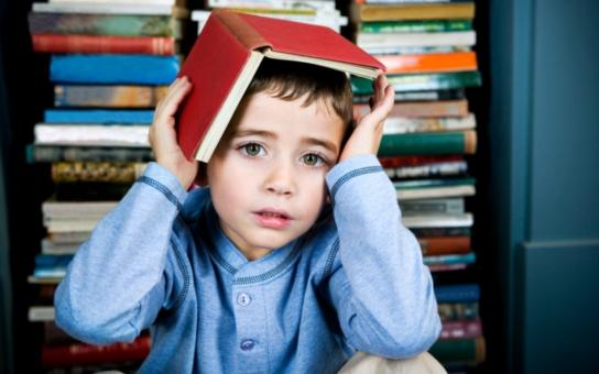 Národní knihovna: České děti jako čtenáři v roce 2013