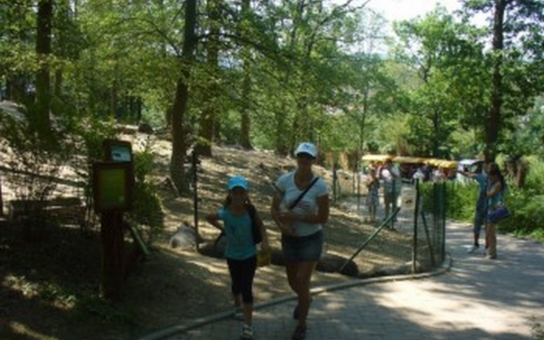 Výstava k 60. výročí založení Zoo Brno je k vidění v Urban centru