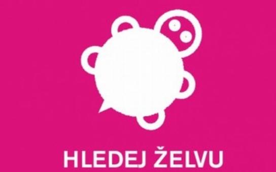 V Olomouci začíná hra s objevováním památek Hledej želvu
