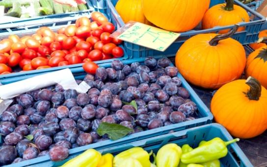 V Roudnici nad Labem budou v sobotu 24.srpna farmářské trhy