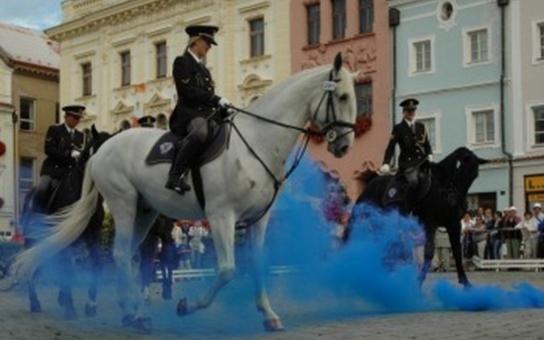 Mezinárodní výstava Koně v akci oslaví patnácté narozeniny