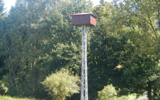 V Jablonci nad Nisou mají první budku pro Rorýse v Česku