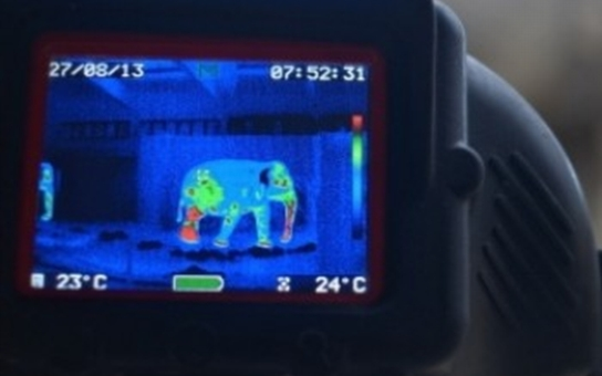 Ostravští hasiči použili v zoo termokameru na slony