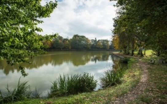 Říčany chtějí oživit a vyčistit rybníky Marvánek a Mlýnský