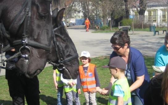 Den s Městskou policií se Městské části Praha 5 vydařil, největší úspěch měli koně