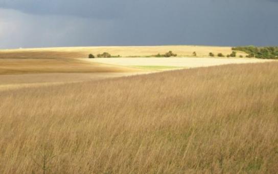 Asociace krajů podporuje požadavky Agrární komory