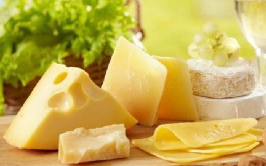 Chceme zákaz sýra? Pak eurovolby ignorujme! Kandidátka do Evropského parlamentu má netradiční názor