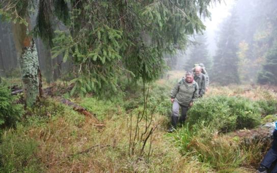 Zájemci o šumavskou divočinu mohou letos opět vyrazit do rašelinišť nebo do pralesa, jsou připraveny i nové atraktivní trasy