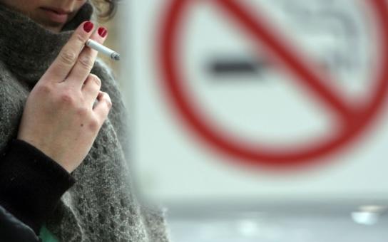 Poslanci tvoří protikuřácký zákon jak v pohádce pejsek a kočička svůj narozeninový dort, pomůže nám od něj také zlý pes