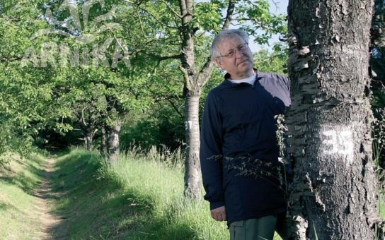 Vykukují zpoza stromů… Za ochranu alejí bojují známí přírodovědci jako Václav Cílek, ale i obyčejní lidé