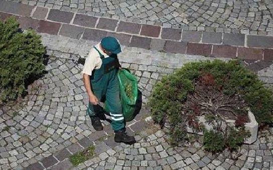 Ročně v České republice pomáhá až 10 000 zaměstnanců, nejvíce v Praze