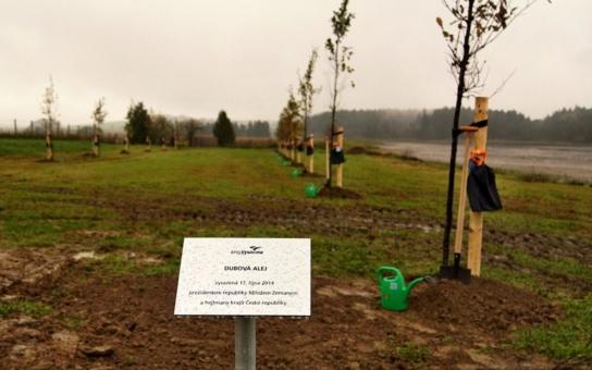 Hejtmani se sešli na Vysočině s prezidentem. Sázeli stromy a uctili památku studenta ze Žďáru. Hejtman Netolický pak jednal se Zemanem o Pardubicku