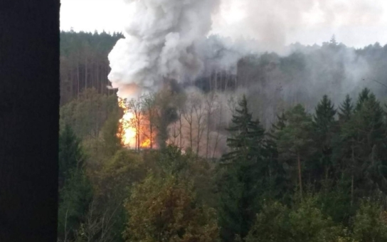 Vlastníci lesů v okolí muničního areálu ve Vrběticích mohou žádat o úhradu zvýšených nákladů, vzkazuje ministerstvo obrany