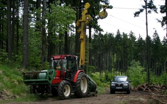 Zloději vykáceli další kus lesa. K čemu potřebovali tolik klád a jaký flastr jim hrozí?