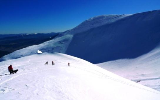 Skutečná záchranná mise: Psovodi z Liberecka našli v ukrajinských horách oběť horolezeckého výstupu. Šlo o pohřešovaného Čecha. Závěr příběhu je ovšem hořký