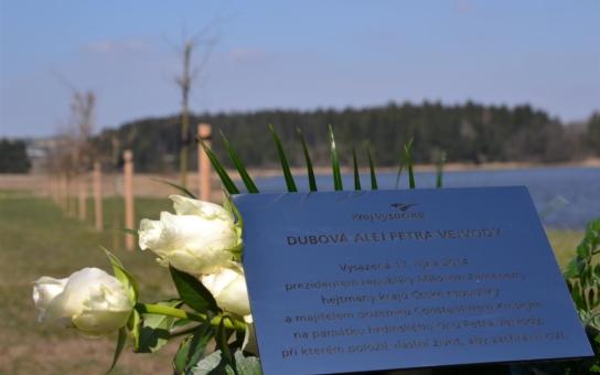 Alej v Novém Veselí, vysázená Zemanem a dalšími politiky, nese nově jméno zavražděného žďárského studenta. Uslyšíte o něm znovu v květnu a říjnu