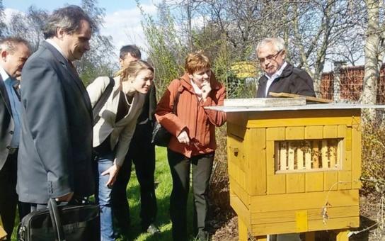 Pardubický kraj chce s Němci spolupracovat v oblasti zemědělství. Víme, co je překvapilo a proč je u včel nezajímal jen med