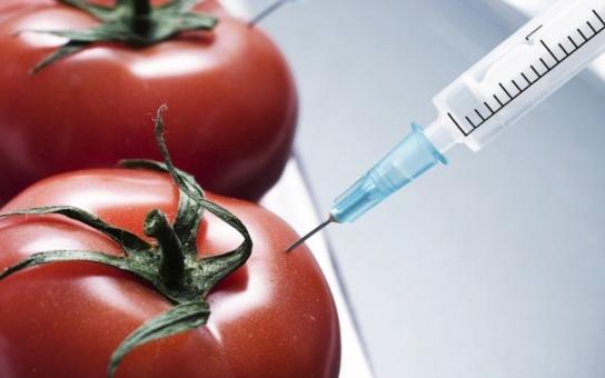 Víte, co jíte? Američané už nikoli. Nový zákon otvírá dveře genetickým úpravám potravin dokořán. Chystá Babiš pro svůj Agrofert totéž?