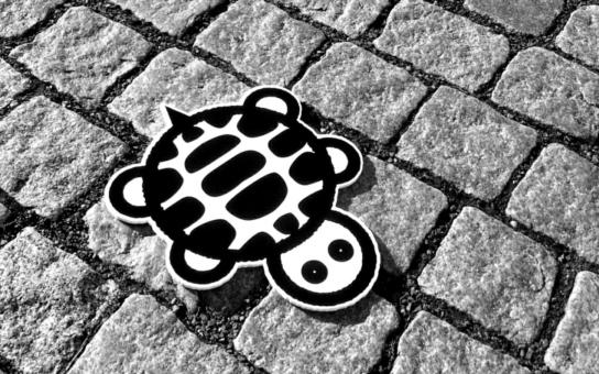 Hledejte želvu. Je černobílá. Šourá se olomouckými ulicemi. Co z toho?