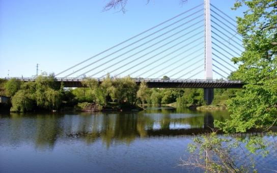 České rybníky prožívají obrovskou ekologickou katastrofu, co se děje?
