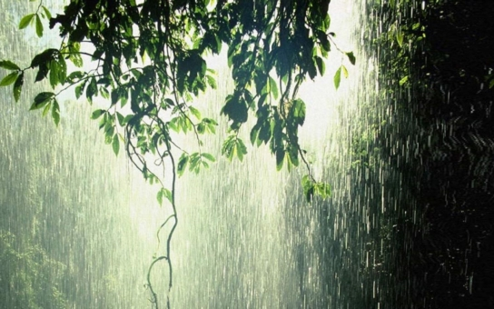 Nezapomeňte doma paraple, bude sice docela teplo, ale dnes a zítra se předpovídá déšť, dokonce bouřky.  Nejhezčí bude středa