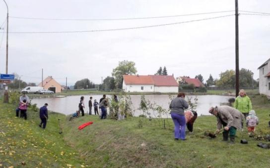 Dobrovolníci ze Žďáru sázeli zeleň okolo místního rybníka