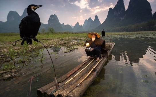 Zvířata a krajiny z celého světa. Nejkrásnější, nejvtipnější, zkrátka ty nejúžasnější fotky roku 2015, které vybrali sami čtenáři proslulého National Geographic