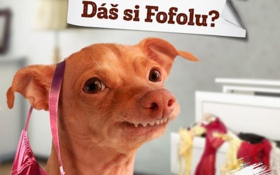 Frandofni pef f pfedkufem: Nejškaredější a přitom nejlegračnější pes Česka, který vyhrál, co se dalo, se ve skutečnosti jmenuje Tuna a žije si jako filmová hvězda, mrkněte