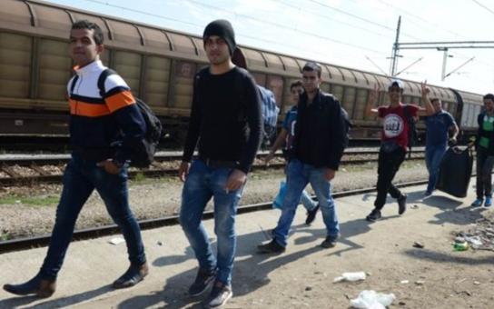 Skupinky mladých 'gangsterů' putují po Evropě se štědrým kapesným v kapse. Prodávají drogy, kradou, útočí na personál center i strážníky. I takhle vypadá migrační krize