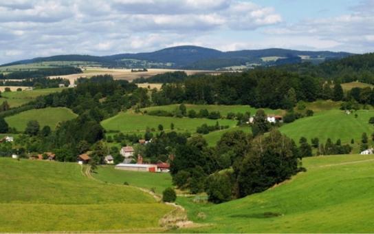 Stezky, ekocentrum, osvětlení. Dotace na obnovu venkova jsou pro menší obce velice důležité, shodli se politici a odklepli peníze pro lepší životní prostředí