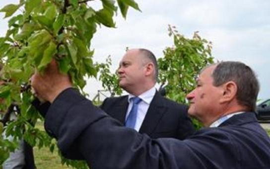 Mrazy poškodily i ovocnáře. Hejtman Hašek chce oslovit vládu a hledat řešení s univerzitou