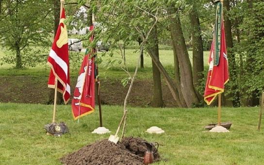 Karel IV. pobyl i v Pardubicích, a to před 653 lety. Nyní mu zde vysadili památný strom