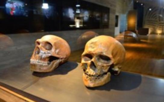 Archeopark zavede do doby lovců mamutů. Jde o největší investici kraje v oblasti kultury. Vznikl v místě, odkud pocházejí nejstarší známé nálezy na světě, dokazující výrobu textilu