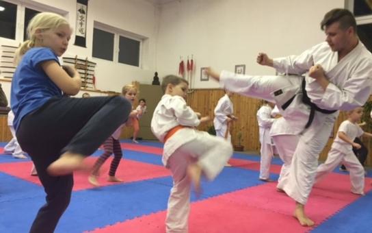 Nábor nových členů chystá klub bojových umění Shin-Kyo v Rychnově nad Kněžnou. Vyzkoušet si karate, aikido, kondiční box, shaolin kung fu nebo tajči může opravdu každý